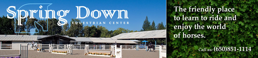 Spring Down Equestrian Center. The friendly place to learn to ride and enjoy the world of horses.